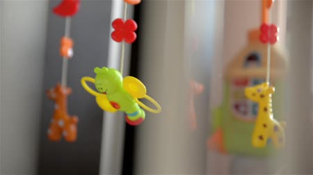 newborn child : Colorful toy for new born in natural light