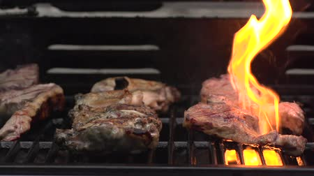Barbecue Flames Slow Motion Stok Video