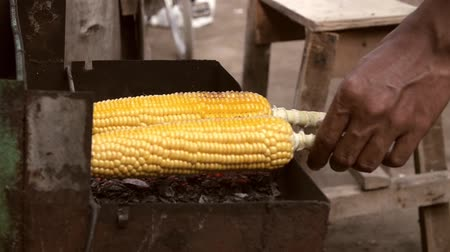 roston sült : Close up of hands turning and fanning sweetcorn on some coals Stock mozgókép