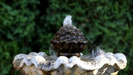 A black-capped Chickadee splashing in garden fountain while taking a bath.