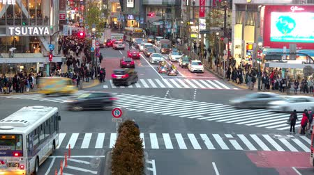 ginza : Shinjuku, Japan - 20 February 2019 - Timelapse of a busy street of Tokyo, Japan, shows busy traffic and moving pedestrians at Shinjuku, Japan on February 20, 2019 Stock Footage