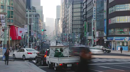 zebry : Tokyo, Japan - 20 February 2019 - Timelapse of a busy street of Tokyo, Japan, shows busy traffic and moving pedestrians in Tokyo, Japan on February 20, 2019