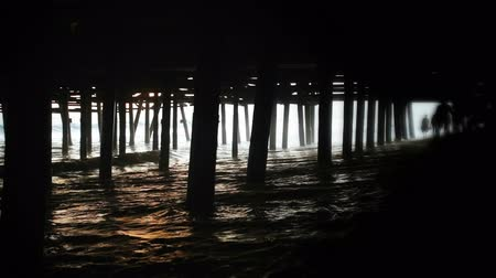 atracação : A couple, in silhouette, running through the waves under a pier Stock Footage