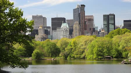 центральный : New York City skyline view through central park and lake Стоковые видеозаписи