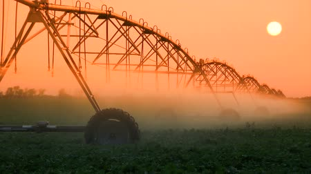 irrigate : Crop Irrigation at Sunset