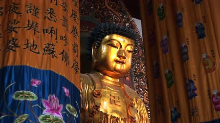 budist : Golden Buddha, Jade Buddha Temple, Shanghai, China, zoom in Stok Video