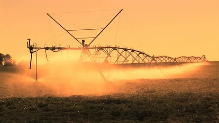 termés : Late afternoon  sprinklers on a farm, Kennewick, Washington