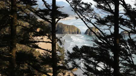 View of Cannon Beach, Oregon through the trees