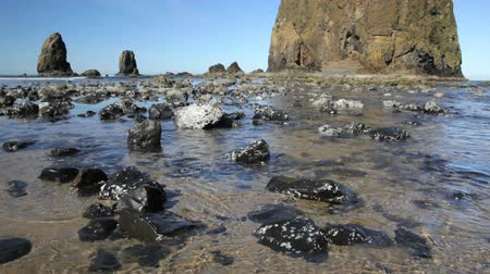 Tidal pools at Haystack Rock, Cannon Beach, Oregon