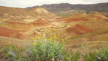John Day Fossil Beds National Monument, Painted Hills in Oregon, Kamerafahrt Videos