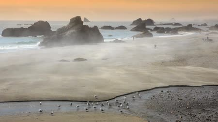 Oregon costa, Harris Beach, nebbia a rotazione in un giorno di estate, comprende l'audio di alta qualità. Filmati Stock