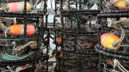kafes : Stack of empty crab pots, Oregon, dolly shot Stok Video