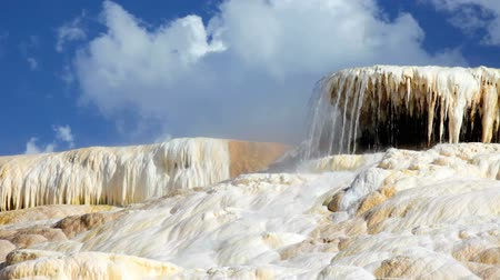 mammoet : Palet Lente in het gebied Mammoth Hot Springs van Yellowstone National Park