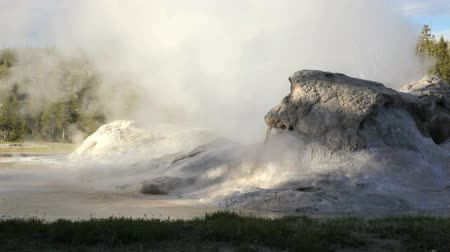 géiser : Eruption from Grotto Geyser, Yellowstone National Park