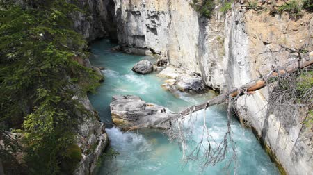 margem do rio : Marble Canyon, glacial meltwater channel, in Kootenay National Park, Canada