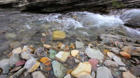 cours d eau : Cameron Creek, dolly shot