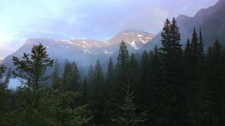 ledovec : Clouds rushing through the pine trees before a mountain, time lapse