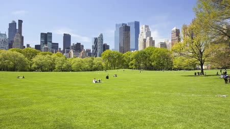 центральный : Sheep Meadow in Central Park, New York City, time lapse