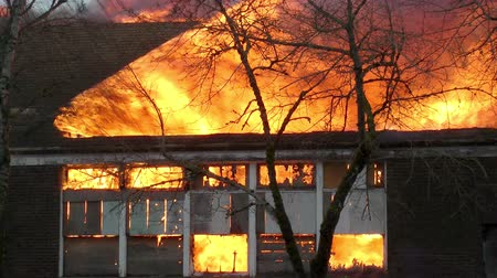 building heat : Fire consumes a building during a controlled burn of an abandoned public school building Stock Footage