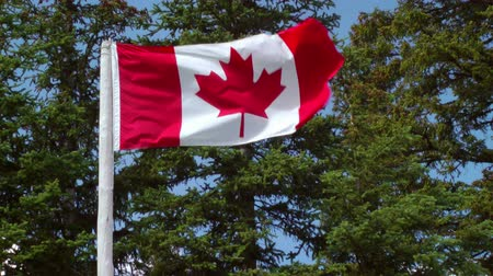 kanadai : The Canadian Flag Flying