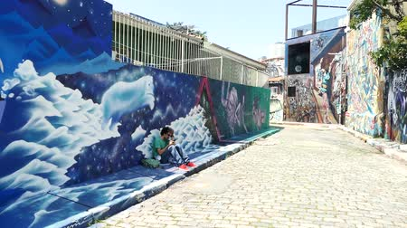murals : Scene from Brazil South America Slow Motion of famous grafiti street