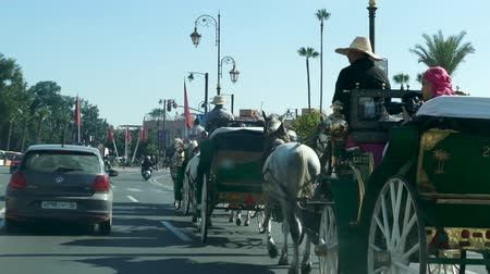stationary : Horse and Cart Tourist Transportation Travel Vacation Marrakesh Morocco