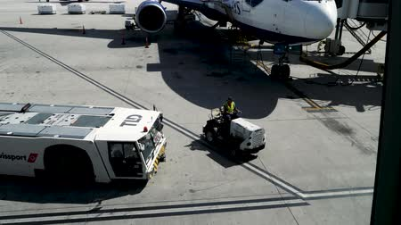 nakládané : Las Vegas, United States - April 19, 2019: Las Vegas Baggage handlers and ground crew loading and moving baggage and cargo around McCarran Airport. Dostupné videozáznamy