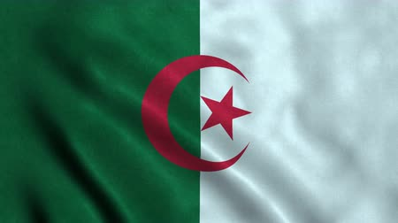 algeria : 4K Seamless Loopable Flag of Algeria Stock Footage