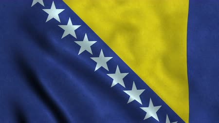 4K Seamless Loopable Flag of Bosnia and Herzegovina