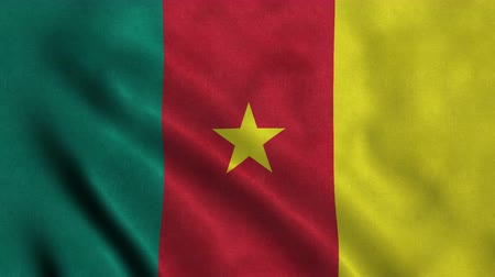 4K Seamless Loopable Flag of Cameroon