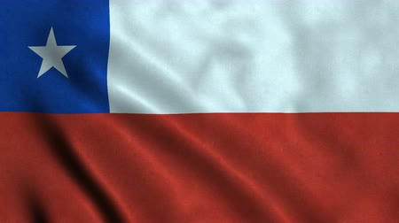 4K Seamless Loopable Flag of Chile Stock mozgókép