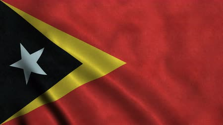 east timor : 4K Seamless Loopable Flag of East Timor Stock Footage
