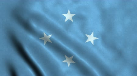 4K Seamless Loopable Flag of Federated States of Micronesia Stock mozgókép