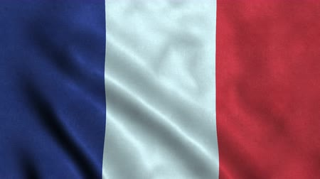 4K Seamless Loopable Flag of France