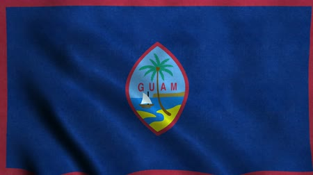 4K Seamless Loopable Flag of Guam