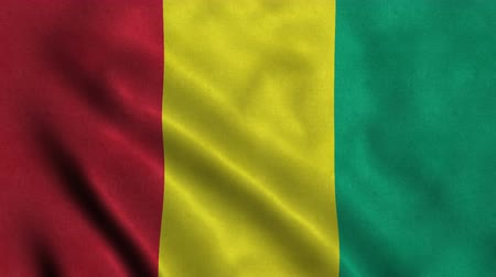 seqüência : 4K Seamless Loopable Flag of Guinea