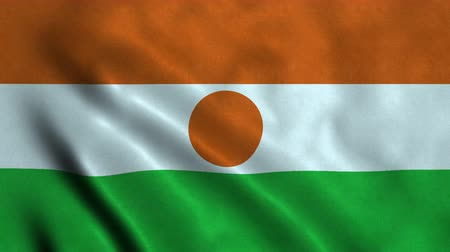 niger : 4K Seamless Loopable Flag of Niger