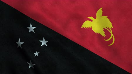 gine : 4K Seamless Loopable Flag of Papua New Guinea Stok Video