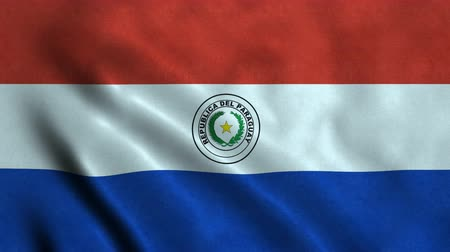 cumhuriyet : 4K Seamless Loopable Flag of Paraguay Stok Video