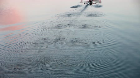 veslování : Arial view of a unrecognizable two-person rowing team during practice in a river colored from sunset leaving wonderful waving pattern on waters surface Dostupné videozáznamy
