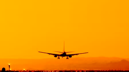 идентификация : Back view silhouette of airplane landing at the airport at sunny orange and purple sunset. Runway end identification lights and strobe glowing. Стоковые видеозаписи