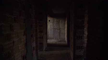 dark desolate : Old, scary, abandoned house interior. Wooden door at the end of scary concrete corridor. Architecture structure Stock Footage