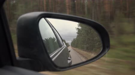 célere : Rear view of car mirror on the road in nature on a cloudy day. Driving through pine forest landscape