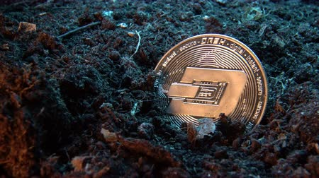 graver : Mining crypto currency - Dash coin. Online money coin in the dirt ground. Digital currency, block chain market, online business