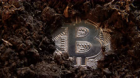mijnwerker : Mining crypto currency - Bitcoin. Online money coin in the dirt ground. Digital currency, block chain market, online business