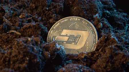 mijnwerker : Mining crypto currency - Dash coin. Online money coin in the dirt ground. Digital currency, block chain market, online business