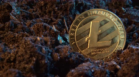 skarb : Mining crypto currency - Litecoin. Online money coin in the dirt ground. Digital currency, block chain market, online business Wideo