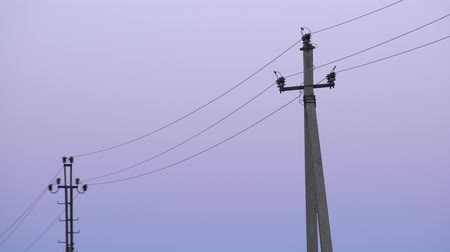powerline : Old concrete electricity poles in the village at twilight. Rustic phone poles with high voltage cables and colourful dawn sky background Stock Footage