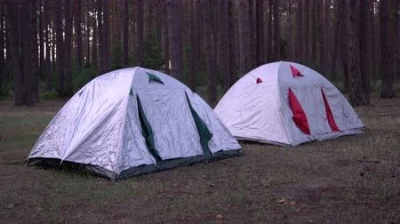 тусклый : View of two tents in a campsite in the forrest at twilight. Waterproof tents surrounded by trees in the woods. Spending the night in wilderness