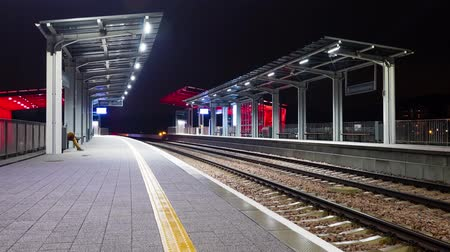 ekspres : Modern railway train station at night. Bright colors and blurred rapid movement. Stok Video